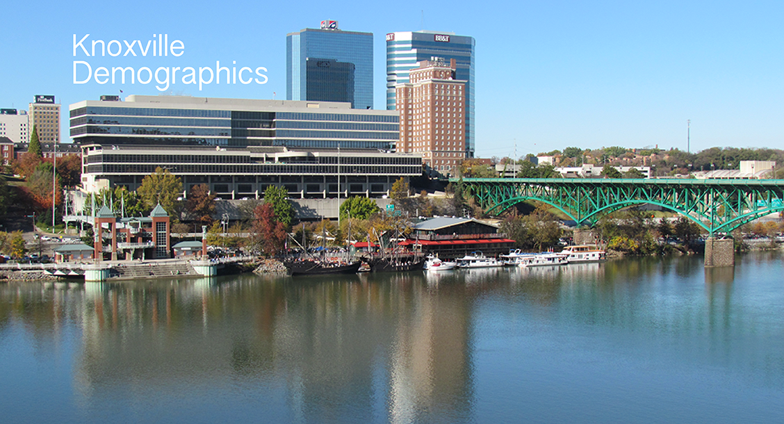 knoxville demographics